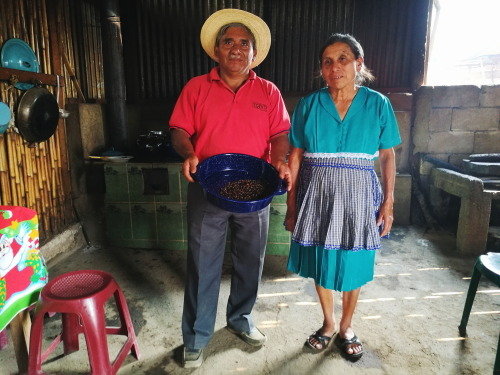Coffee farmers in Guatemala